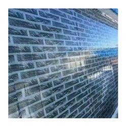 Cor de acabamento do espelho de Alumínio Revestido bobina de aço médio quente