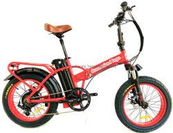 20인치 접이식 타이어 전동 자전거 48V/500W 성인 전기 자전거
