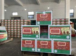아프리카 인기 중국 OEM 공장에서 가져온 토마토 페이스트/피자 소스
