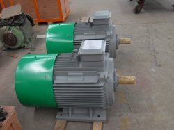50kw 80kw a 90kw 100rpm de velocidad baja magnético Vertical alternador para Turbina de viento de la turbina de agua