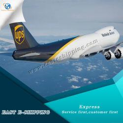 DHL fiables/UPS/TNT/Servicio de Entrega de FedEx Express desde China a América del Sur
