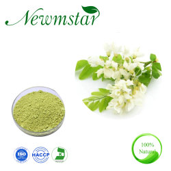 Rutin Fabricant fourniture Sophora Japonica Flower Extract