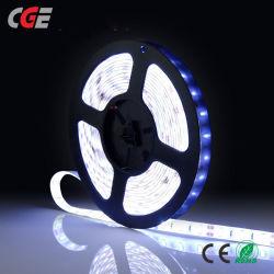 LED 지구 빛 SMD2835 5050 5m 방수 LED 테이프 DC12V 리본 다이오드 LED는 IR 리모트 관제사를 가진 램프를 분리한다