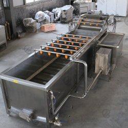 SUS304 légume racine Matériel de lavage pour l'usine de transformation des aliments