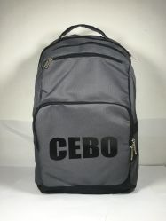 주문 폴리에스테 다기능 배낭 Schoolbag 어깨에 매는 가방이 최신유행 여행 휴대용 퍼스널 컴퓨터 책가방에 의하여 농담을 한다