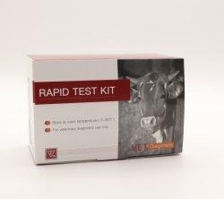 Prueba de veterinarios de fiebre aftosa peste porcina Virus las enfermedades Fmdv Anticuerpos Anti-O-O Ab prueba de diagnóstico rápido