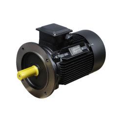 erstklassige dreiphasigelektromotoren der hohen Leistungsfähigkeits-0.75kw des Standards Ie3 (YE3-80M2-4 1HP)