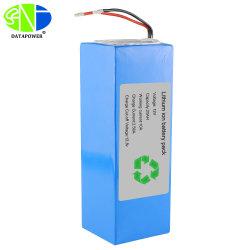 Premier fournisseur LiFePO4 12V 24V 36V 48V Li Ion pour système de stockage de l'énergie