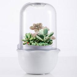 지능적인 Succulents에 의하여 통합된 옥수수 속 LED는 빛을 증가한다
