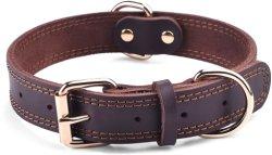 Collar de perro de cuero cuero genuino con el hardware de aleación