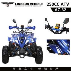 Nieuwe 250cc Big Motorcycle ATV Quad Bike met CE