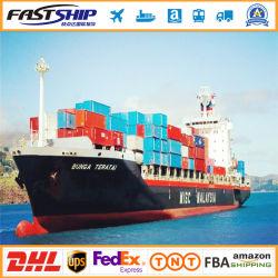 Seefrachtschiff nach Miami Tampa in der Seefracht-Haus-Hauslogistik China zu Florida USA