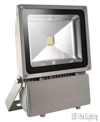 Projecteur à LED (L-FL-W-100W)