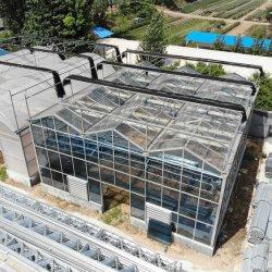 Systèmes solaires de chauffage Xinhe utilisés pour la serre de verre multi-plage