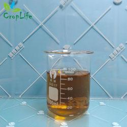 Validamycin (64%TC, 24SL, 40SL, 50SL, 10%SP, 20%SP, 60%SP) - Fungizid CAS Nr. 37248-47-8