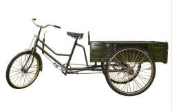 Fabricado en China la caja de carga triciclo Hy-05