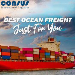 Fast Shipping Agent lage vrachttarieven naar de VS/Canada/het VK/Duitsland/Spanje/Frankrijk