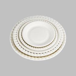 100% Kompostierbar Pappteller Weiß, Heavy-Duty Qualität Biologisch Abbaubar Umweltfreundlich Zuckerrohr Bagasse, Dessertteller