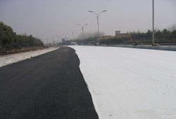 La route en fibre de verre composite de géotextile géogrille Matériaux de construction