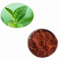 Het goede Polyphenols van het Aroma Organische Onmiddellijke Zwarte Uittreksel van het Poeder van de Thee