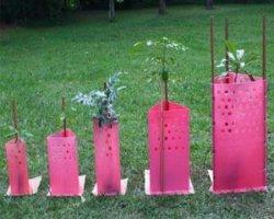 Flûte de base de pliage Arborescence Arborescence ondulé Guardsplastic gardes arbre protecteur en plastique ondulé vert