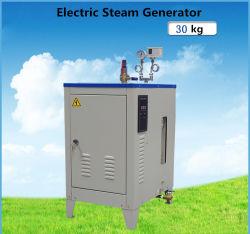 30kg/H de elektrische die in de Fabrieken van de Was aan Ijzer wordt gebruikt en Droge Generator van de Stoom, de Rijst van de Stoom
