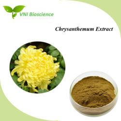 ISOSGS bestätigte Flos Chrysanthemi Auszug/Chrysantheme-Auszug