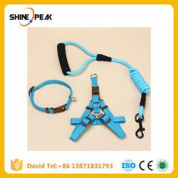 Produits en PET pour chien en laisse de faisceau de câbles accessoires Dog-Collar Pet gilet de chiot de chien en laisse de faisceau pour les animaux