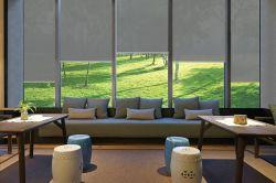 リモート・コントロール日焼け止めは日曜日の陰のローラーの窓カーテンのブラインド透過PVCブラインドを盲目にする
