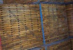 Le bambou congelés Carte de stockage