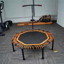 De Afneembare Trampoline van uitstekende kwaliteit van de Gymnastiek van de Geschiktheid
