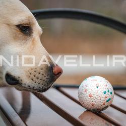E-TPU 製の Bite Prudutダクト 用の Pet Dog Toy Ball チェリーブルームシリーズ
