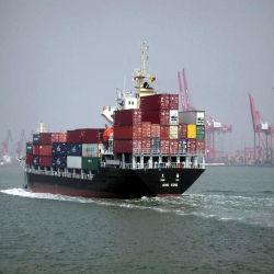 Consolidamento Sea Freight per Damman From Cina