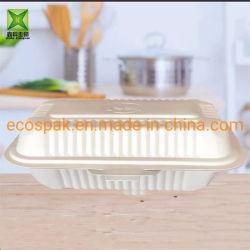 Casella di pranzo asportabile a gettare biodegradabile rettangolare dell'amido di granturco della casella di pranzo della casella di pranzo 750/1000ml