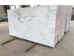Matériaux de construction de nouveaux Castro pour comptoir en marbre blanc/mural/de carreaux de plancher