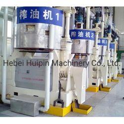 Parafuso contínua pressão de óleo de pressão do óleo de colza Expulsor de óleo de cânhamo