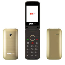 De Chinese OEM van 2.4 Duim Dubbele Dubbele Reserve2g Mobiele Telefoon van de Tik SIM