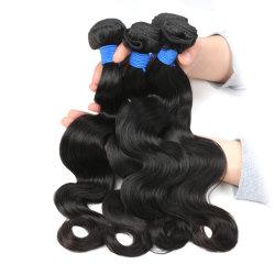 試供品の毛は卸し売りバージンのブラジルの毛の束、安い8A等級のバージンのブラジルの毛、ミンクのブラジル人の毛を束ねる