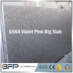 Les matériaux de construction en pierre de granit de granit de carreaux de granit de dalle mur