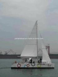 38FT стекловолоконные парусного катамарана судна для перевозки пассажиров и на полдня