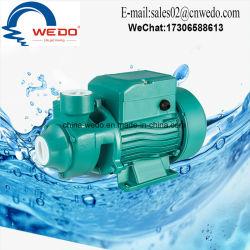 Qb60 limpieza de alta calidad bomba eléctrica de agua bomba periférica