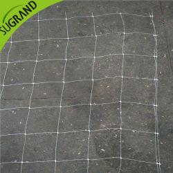 De HDPE Compensação Ervilha extrudido 8G/M2 10G/M2 Suporte de plantas de escalada vegetais líquidos de condução