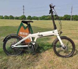 Eのバイクを折るか、または電気バイクキットまたは小型自転車またはFoldable Ebikeを折るリチウム電池