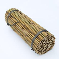L'agriculture Produits/Produits de la ferme/support en bambou de croissance des plantes
