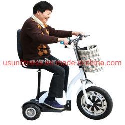 3 roues de la mobilité électrique Scooter pour adultes avec la CE