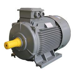 Ie3 de l'induction du moteur du ventilateur en trois phases