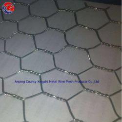 O hexagonal de ferro galvanizado metálicas de frango