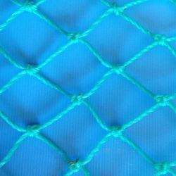 Il reticolato della plastica di polietilene della fabbrica della Cina e la plastica piani si sono sporti maglia