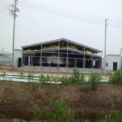 Estrutura de aço Prefab Casa comercial de aves de capoeira/Farm House
