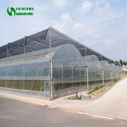 La película de plástico agrícola Multi-Span inteligente invernaderos de tomate y pepino/fresa/Hidroponía lechuga
